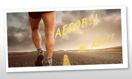 Tudj meg mindent az aerob edzésről