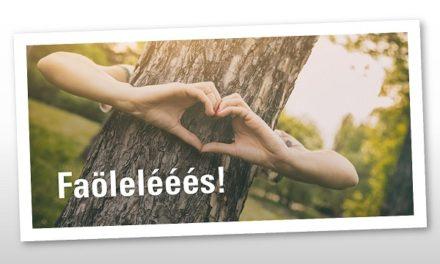 Dönts… REKORDOT! A Nagy faölelési akció!
