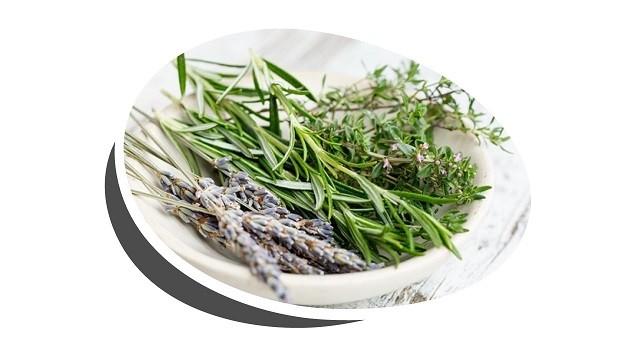 Gyógy- és fűszernövényeink