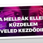 Havonta 5 percen múlhat a magyar nők élete